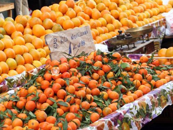 Oranges_584x438px@300dpi